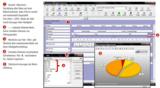 Daten objektiv bewerten, analysieren und reporten