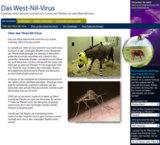 Screenshot www.westnile.de