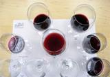 Weine des Weinguts Galil Mountain, Oberes Galiläa