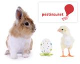 Ostern für kreative E-Mailings nutzen © grafikplus - fotolia