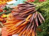 Gemüse - am besten frisch vom Erzeuger (Foto: Proplanta)