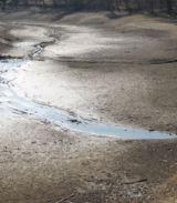 Dürre tritt hauptsächlich in Südostasien als Folge des El Nino auf. (Foto: Proplanta)