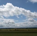 Lostage galten traditionell als Wetterbote (Foto: Proplanta)