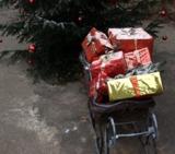 Weihnachten 2008 - leider ohne Schnee (Foto: Proplanta)