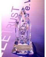 Der Innovationspreis 2008 von TeleTrusT geht an Secusmart