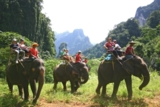 Auf Elefanten durch den Dschugel
