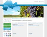 """Screenshot der Seite """"Business-Rhein-Neckar""""."""