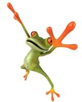 Schmeiss den Frosch an die Wand! Foto: © Julien Tromeur