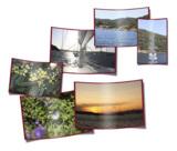 """Natur und Umwelt sind das Thema des TONC-Fotowettbewerbs """"Dein Foto für die Tonne!"""""""