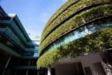 Fassadenbegrünung als nachhaltige Gebäudekomponente © Fraunhofer IBP