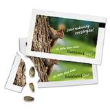 Das Samen-Briefchen im Checkkartenformat als Mailingverstärker