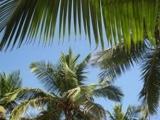 Urlaubsfreuden sorgenfrei genießen