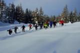 Schneeschuhwandern mit den Nationalpark-Rangern
