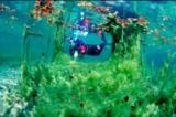 Unterwasser Attersee (Salzkammergut)