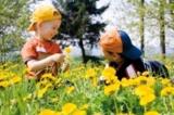 Der Ulrichshof im Bayerischen Wald ist ein wahres Abenteuerland für Kinder.