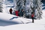 Langläufer in Waldmünchen