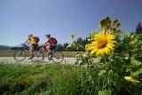 Elektro-Bikes sind ideal, um längere Strecken zu fahren. (© Region Klopeiner See - Südkärnten)