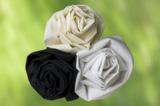 """""""Organic Cotton""""-Gewebe von Melchior bestehen aus Baumwolle aus kontrolliert  biologischem Anbau."""