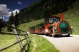 Mit der Tschu-Tschu-Bahn ins Naturschutzgebiet