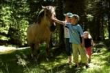 Kinder auf dem Ponyerlebnisweg