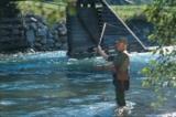 Fliegenfischer in der Möll