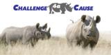 """Save the Rhino"""
