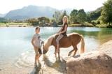 Im Viersternehotel bleiben für die Reiter und die Pferdefreunde keine Wünsche unerfüllt.