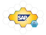 Bilanzanalyse mit SAP