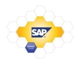 Bürgel Connect für SAP
