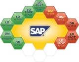 Forderungsmanagement mit SAP