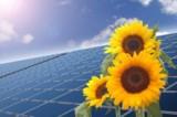 Umweltschonende Solaranlagen der  Ever Energy Group