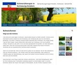 Schmerztherapieführer Schleswig-Holstein