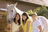 Pferdehaftpflichtversicherung auch für Ihre Reitbeteiligung