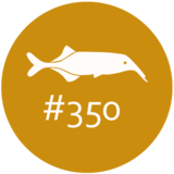 Logo Abo-Programm Wir sind Ihre 350 besten Mitarbeiter #350(c) NIMIRUM