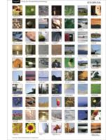 Geschenkt: Poster mit 70 Bild-Affirmationen