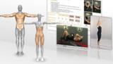 Online Trainer erzeugt automatisch Trainingspläne.
