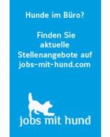 Das erste hundefreundliche Jobportal