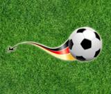 WM 2014 Tippspiel: Gewinne ein Seminar.