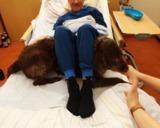 Patient genießt die Anwesenheit der Besuchshundestaffel des ASB Ingolstadt - Foto: ASB Ingolstadt