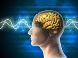 ib: Psychologie und Umsetzung