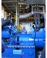 Erläuterungen im Biogas-BHKW