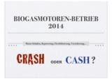 Worauf sich Biogasmotoren-Betreiber einstellen müssen