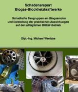 Ausführliche Beschreibung typischer Biogasmotoren-Schäden