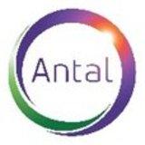 Dies ist das neue Logo Antal Internationals.