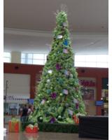 Weihnachtsbaum in Ecuador