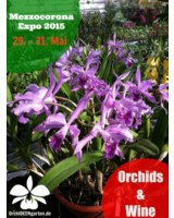 Orchids & Wine auf der Expo Mezzocorona 2015 mit Orchideengarten Karge