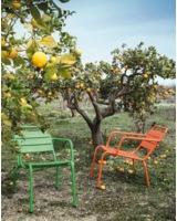 Lounger Luca in Orange und Grün