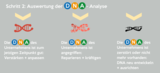 Auswertung der DNA-Analyse