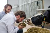 fodjan erleichtert den Arbeitsalltag von Milchviehhaltern und Beratern