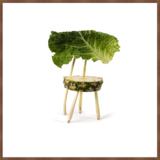 Blue Wall Foto-Kunst Stühle aus Obst und Gemüse